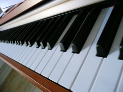 Klaviertastatur © Gabi Schoenemann, pixelio.de