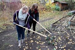 Schulgarten Werkzeuge 2013 – Bild 1