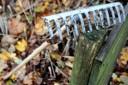 Schulgarten Werkzeuge 2013 – Bild 5